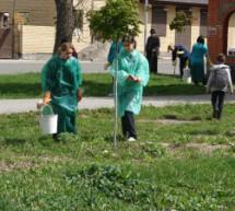 В Карачаевске провели субботник ко Дню возрождения карачаевского народа
