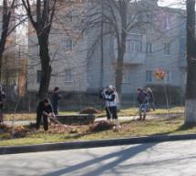 В Карачаевском городском округе прошел День чистоты