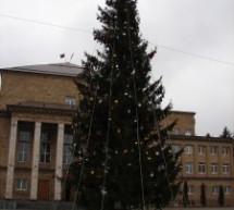 В Карачаевске установили новогоднюю елку