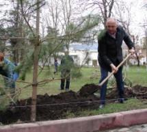 В Карачаевске заложили Парк Победы
