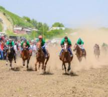 В Карачаевске прошли конно-спортивные мероприятия