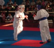 В г. Карачаевске состоится турнир по Кёкусинкай каратэ