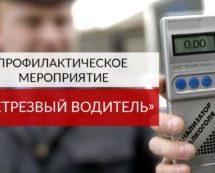 В Карачаевске пройдут профилактические мероприятия по выявлению водителей, управляющих транспортными средствами в состоянии опьянения