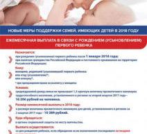 В целях стимулирования рождаемости 28 декабря 2017 г. принят Федеральный закон № 418-ФЗ «О ежемесячных выплатах семьям, имеющим детей».