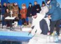 18 января в Карачаевске пройдут крещенские купания