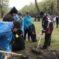 Карачаевск присоединился к масштабной акции «Зеленая весна»