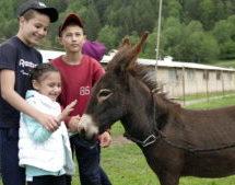 Особенным детям в Карачаевске в День защиты детей устроили праздник с реабилитационными процедурами
