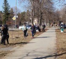 C 1 по 30 апреля на территории КГО будет проведен месячник по благоустройству и санитарной очистке