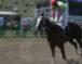 В Карачаевске прошли традиционные  конноспортивные мероприятия