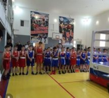В Домбае стартовал турнир по боксу