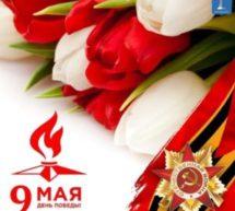 Бесконечная благодарность солдатам Великой Победы!