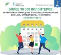 Более 30 000 волонтеров готовы помочь в проведении Всероссийского голосования за объекты благоустройства